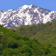 新緑と残雪の鹿島槍ヶ岳