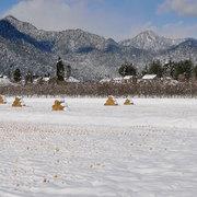 松川村の冬
