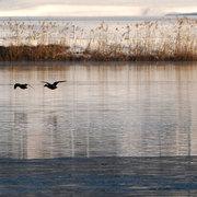 大町市 木崎湖の冬