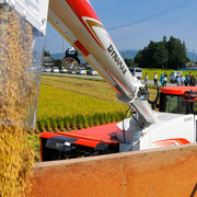 松川村 収穫の時