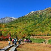 小谷村 栂池自然園の秋