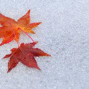 白馬村 冬の始まり