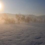 朝日の雪原