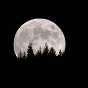 昇る中秋の満月