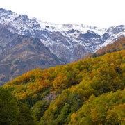 白馬岳冠雪と猿倉紅葉