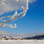 厳冬期の白馬村姫川