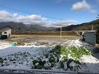 今年の初雪は11月28日でした。(画像は11月30日朝の大町市です)