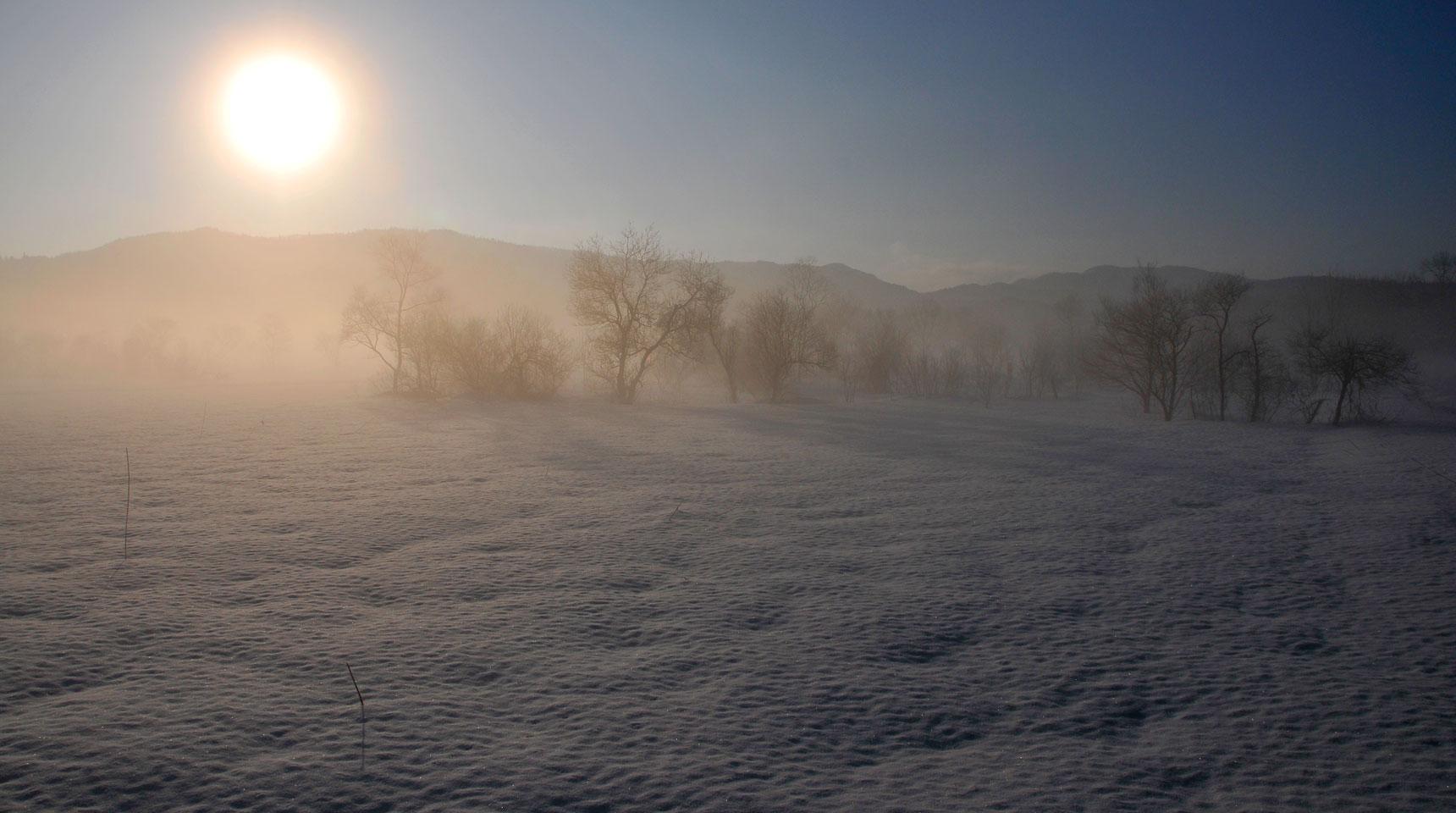スライド84 白馬村神城 霧氷の朝