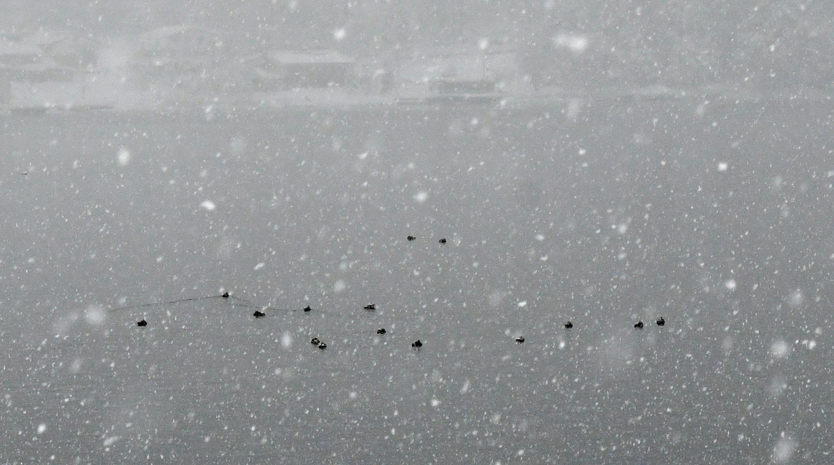 スライド85 降雪の青木湖