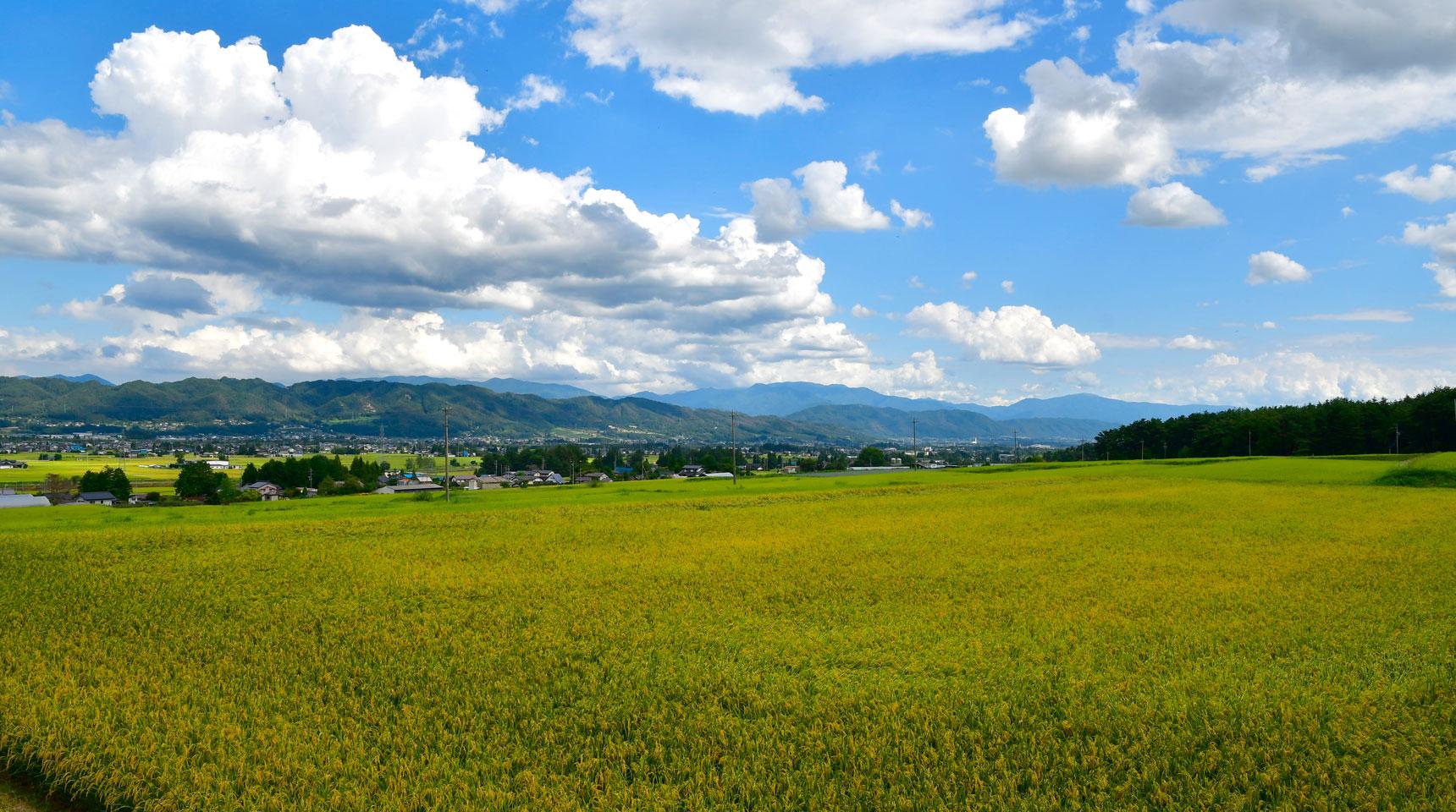 スライド114 松川村の8月