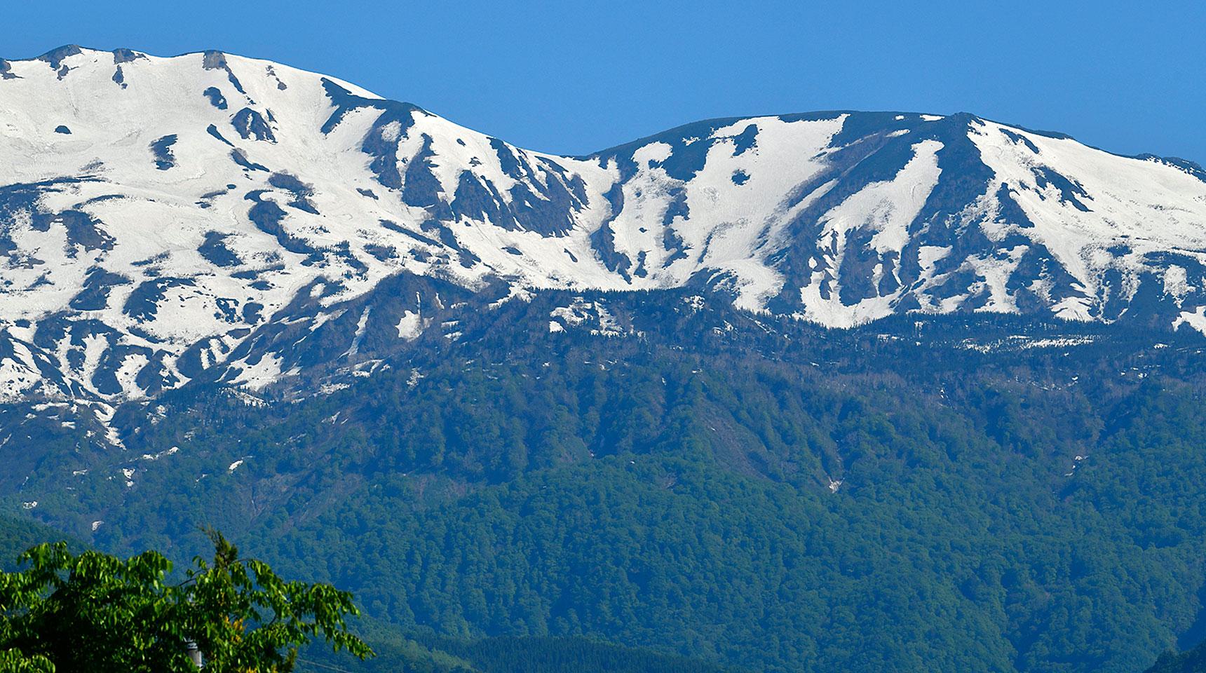 スライド156 北アルプスの雪形と新緑