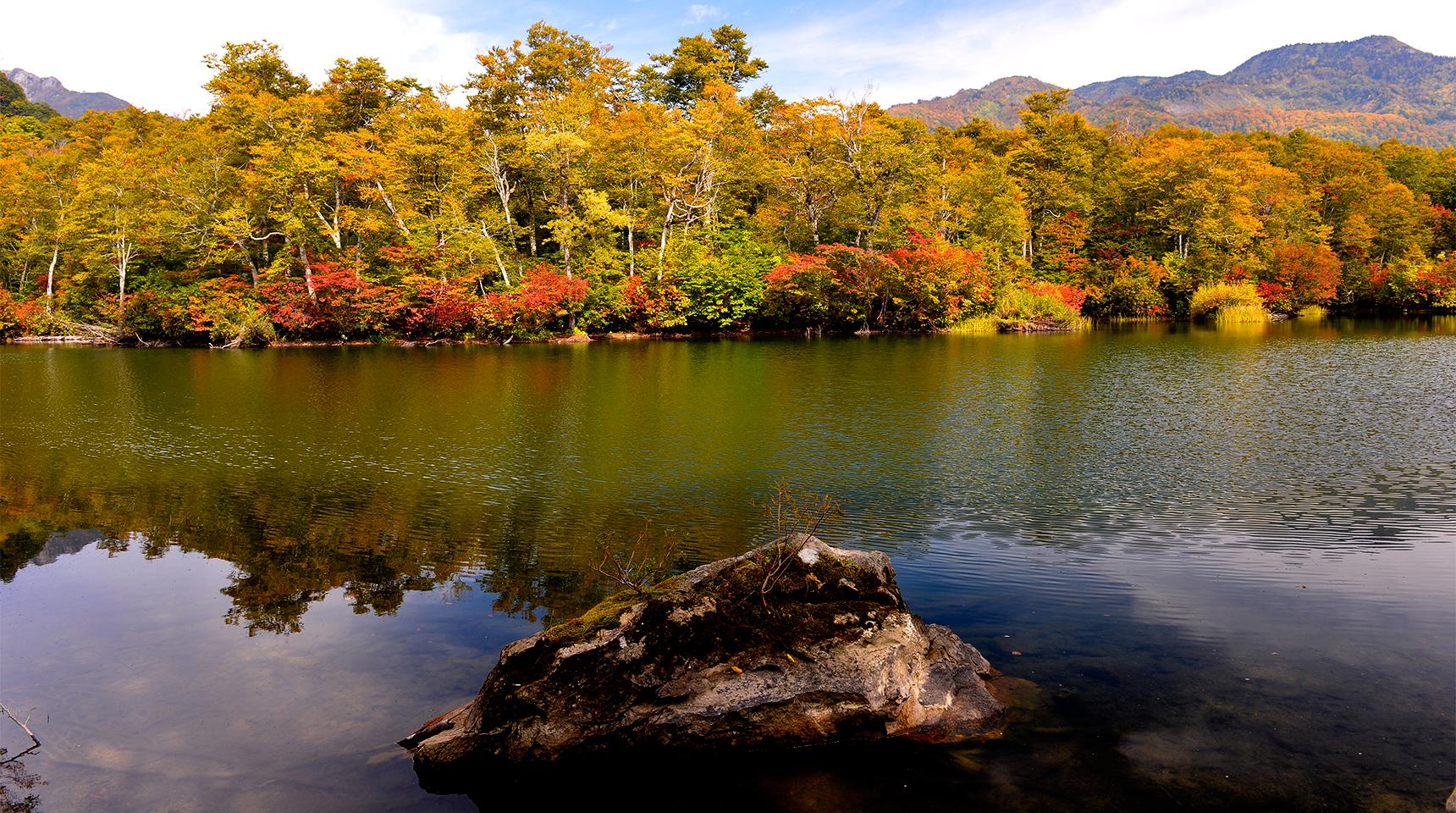 スライド 237  小谷村 鎌池の紅葉